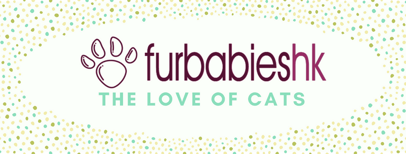 Furbabies FB Group